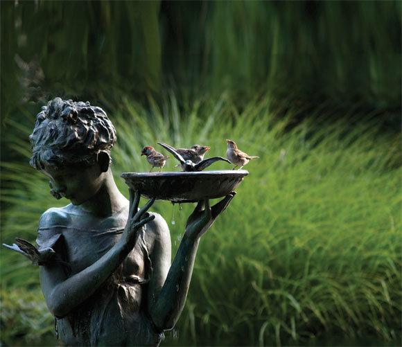 Creating Your Bird Bath