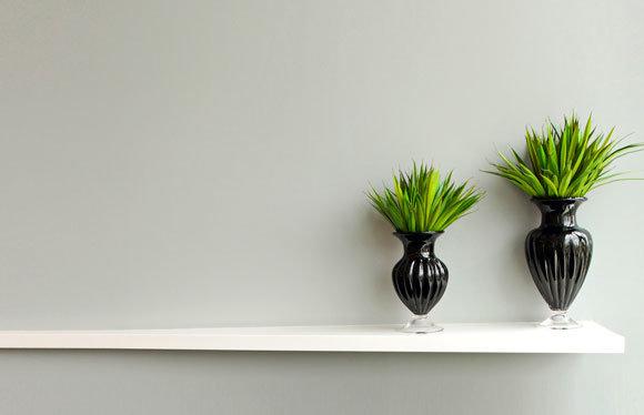 Looking-after-Winter-Indoor-Plants
