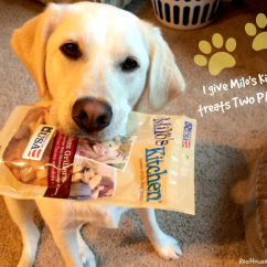 Milos Kitchen Updates Milo S Treat Truck To Come Minnesota Plus A Giveaway Two Paws Up Shop