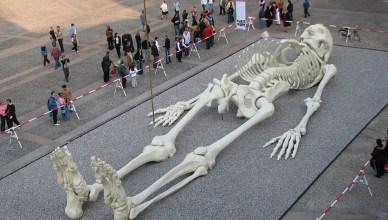 Foi achado em Jerusalém o esqueleto do gigante Golias?