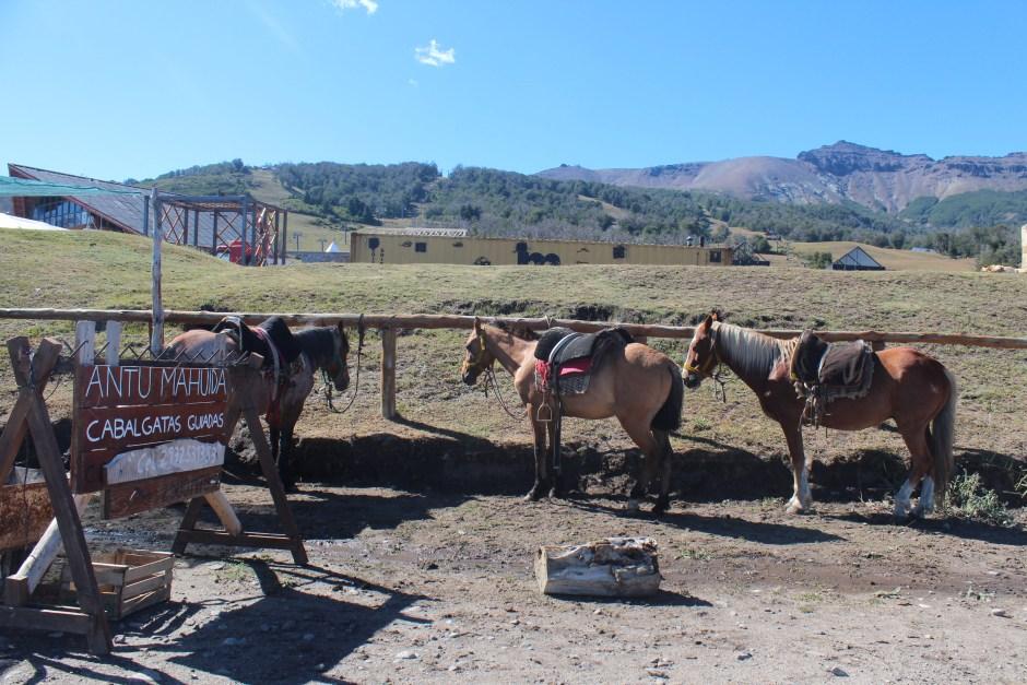La comunidad mapuche Vera ofrece cabalgatas desde la base de Chapelco