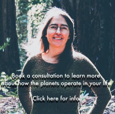 Erica Jones in redwoods: book consult, click here for more info