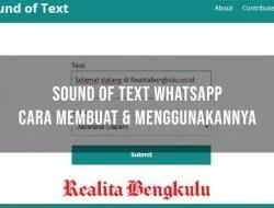 Sound of Text WhatsApp, Cara Membuat & Menggunakan Sound of Text WA