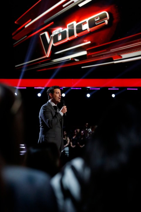 The Voice USA 2015 Spoilers - Voice Playoffs - Voice Top 20 Results