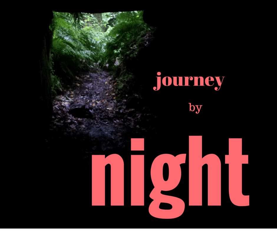 Jung's journey by night - Reality Shift coaching, East London