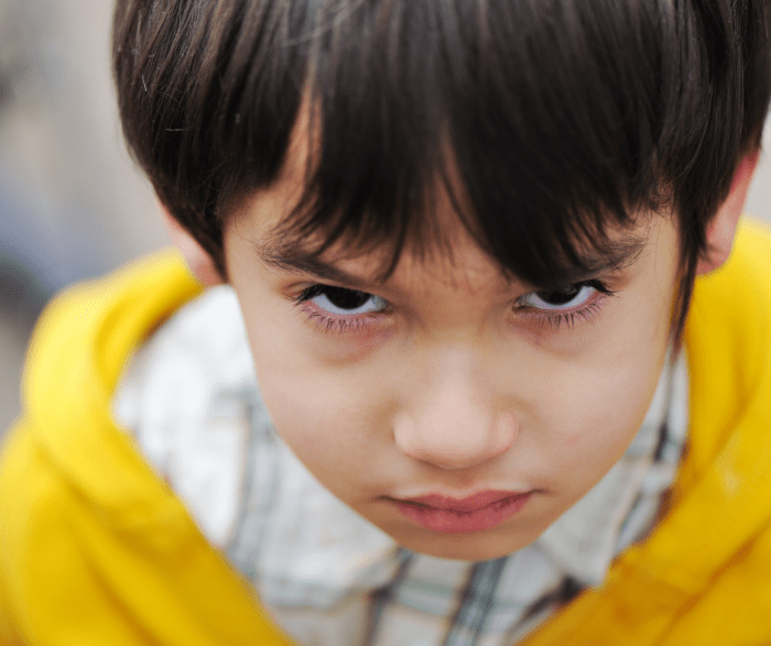 Discipline and the Difficult Child