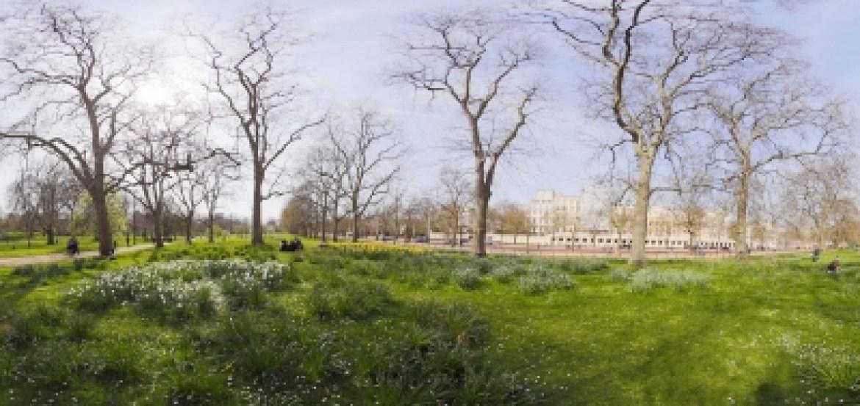 St James Park London, SUmmer Time
