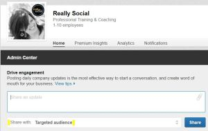 LinkedIn Page post targeting screenshot | Really Social