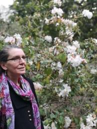 Magnolia Scentsation