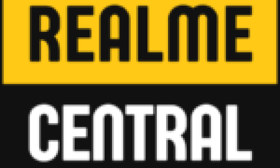 realme 30W DART Powerbank India