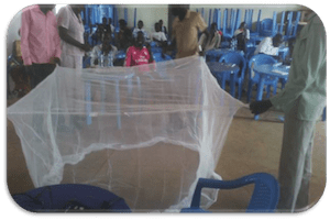 introduction to mosquito nets