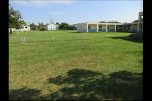 School grounds green field