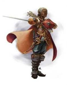 Half-elf Swashbuckler