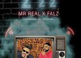 Mr Real Zzz
