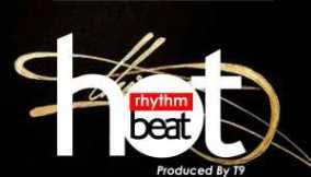 Download Instrumental - Afro melody (Prod  by T9)