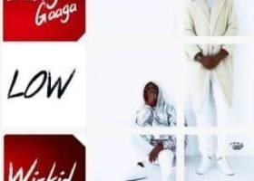 Larry Gaaga Ft. Wizkid – Low 300x300