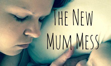 The New Mum Mess