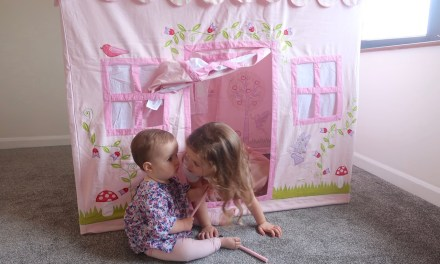 REVIEW – Kiddiewinkles Enchanted Garden and Fairy Woodland Playhouse