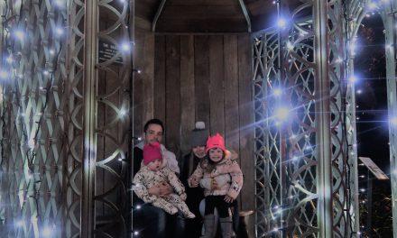 Christmas at the Birmingham Botanical Gardens