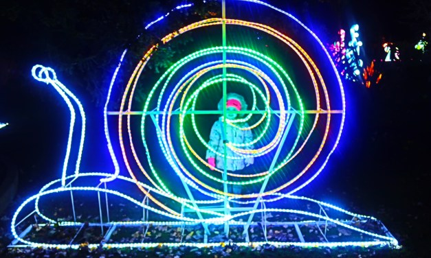 REVIEW – Birmingham's Magical Lantern Festival