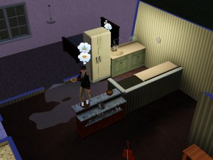 Broken sink, wet floor, and hungry Sim.