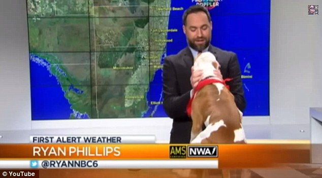 The Weather Report – April 6, 2015