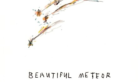 Beautiful Meteor Shower