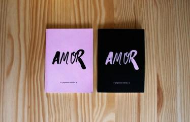 amor-book