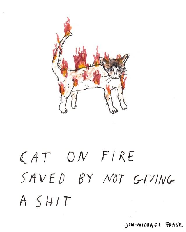 catonfire