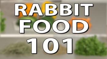 What Do Rabbits Eat? Rabbit Food 101