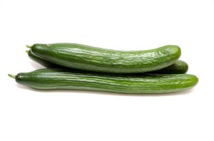 cucumber Safe Fruit and Vegetable for dogs