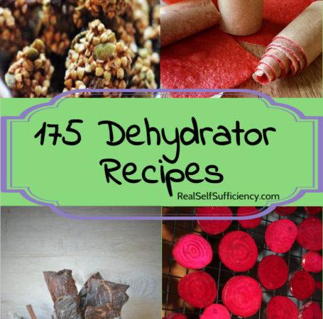 Permalink to: 175 Dehydrator Recipies