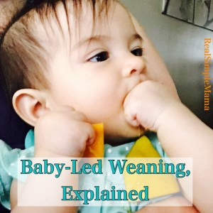 Baby Led Weaning, Explained - RealSimpleMama