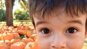 Kiddo being silly at the pumpkin patch!