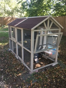 Review: Innovation Pet Deluxe Chicken Coop - Real Simple Mama