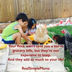 image chick children play egg money How Much Does It Cost to Have Backyard Chickens? - Real Simple Mama