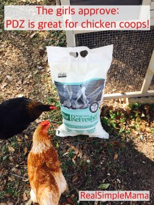 Chicken Chores: How to Take Care of Your Backyard Flock - Real Simple Mama
