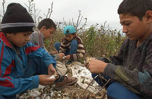 Child Cotton Labourers in Uzbekistan