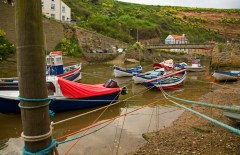 Staithes Cats Cradle - Mike Nicholas
