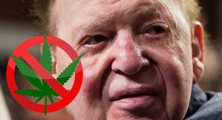 Billionaire Who Is Spending Millions of Dollars In Anti-Marijuana Funding