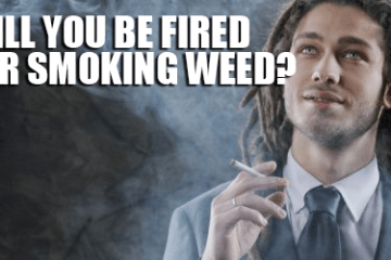 cannabis_job