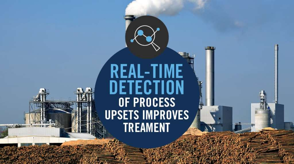 CASE STUDY: LOUISIANA PAPER MILL RECOVERY OF VALUE STREAMS