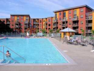 Pool on 3rd Floor