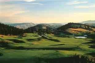 Golf at Predator