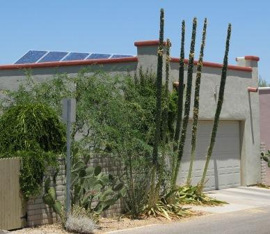 Solar Panels on an Armory Park Del Sol home