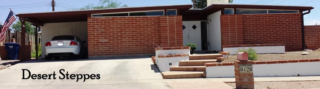 Desert Steppes a Lusk neighborhood on Tucson's east side