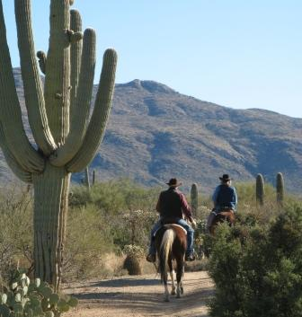 Riding in the Rincon Mountains in Tucson