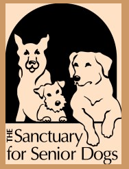 The-Sanctuary-for-Senior-Dogs The Sanctuary for Senior Dogs
