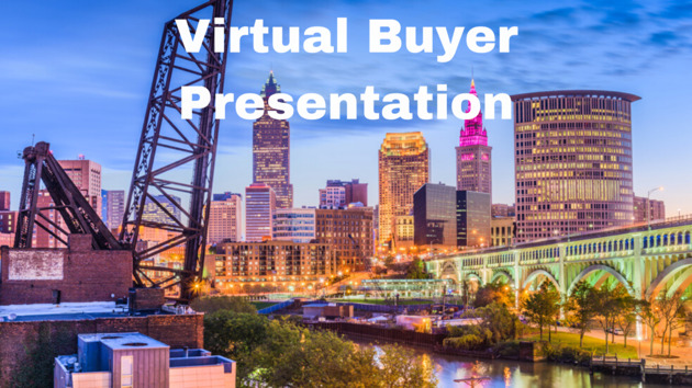 Virtual-Buyers-Presentation Realty Done By Damien Baden