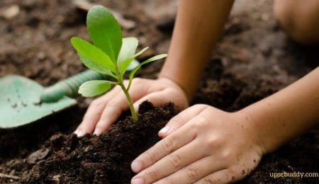 M3M Foundation embarks on environmental initiative to plant 1 million trees in 3 years
